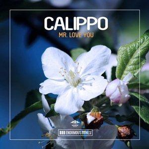 Calippo-Mr. Love You