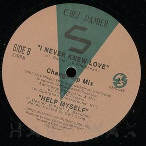 Chez Damier-I Never Knew Love