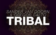 Sander Van Doorn and Gregor Salto-Tribal