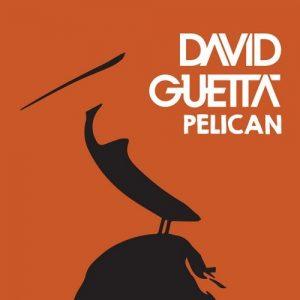 David Guetta-Pelican