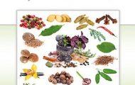 Dr. David Frawley-Gyógynövények