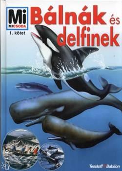 Petra Deimer-Bálnák és delfinek