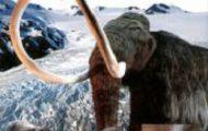 Rainer Crummenerl-A jégkorszak