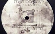 Marco Bailey-Hail Blizzard