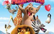 Madagaszkár-Állati szerelem